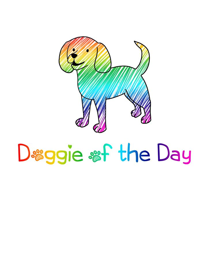 logo Doggie Of The Day
